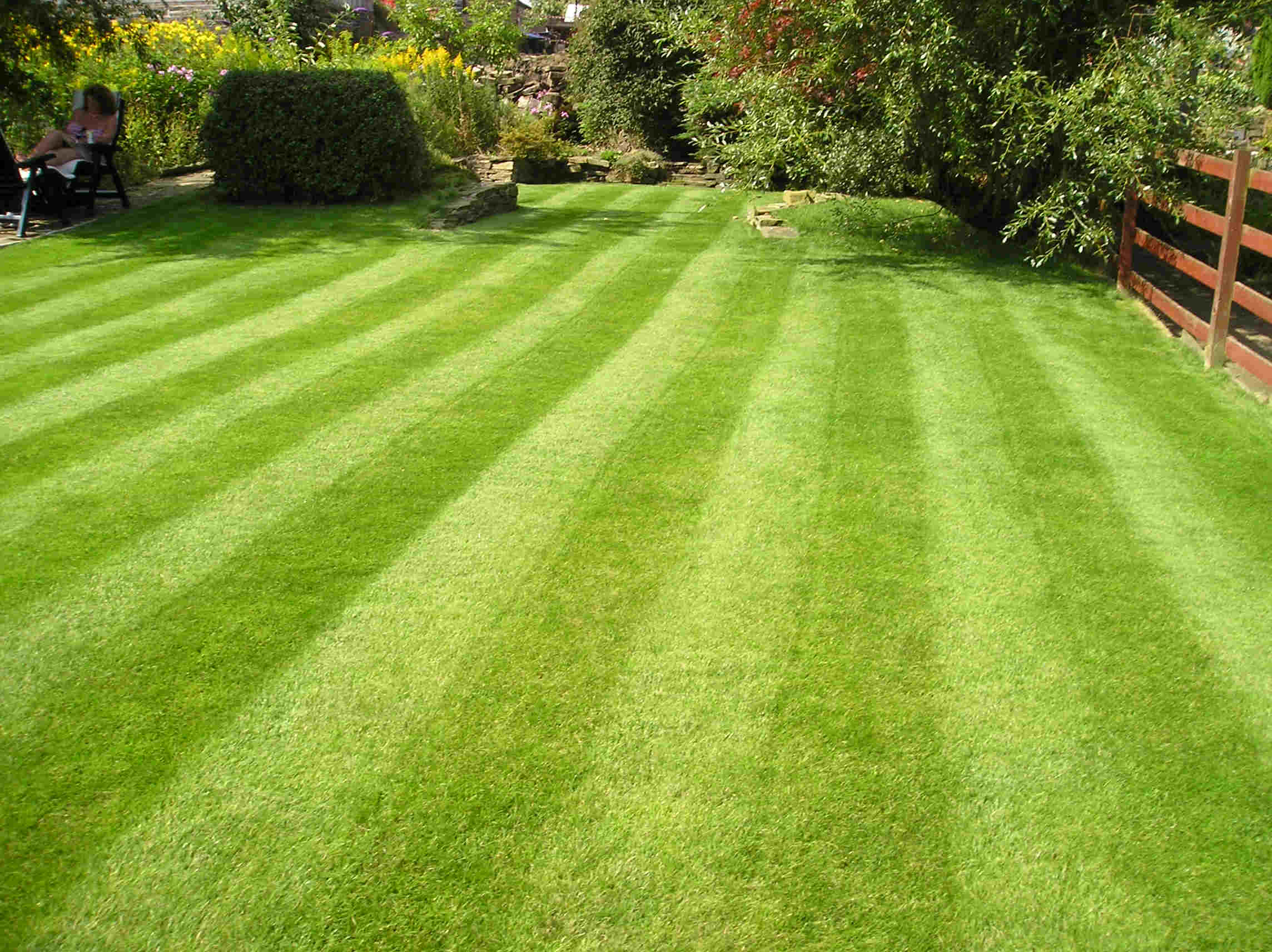 Lawn mowing total lawn care inc full lawn maintenance for Landscape maintenance