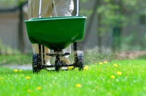Lawn Fertilization Birmingham MI
