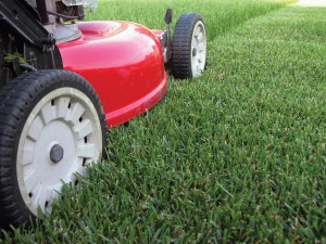 Lawn Mowing Company in Michigan for 2011