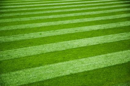 Troy Michigan Lawn Maintenance Service Client