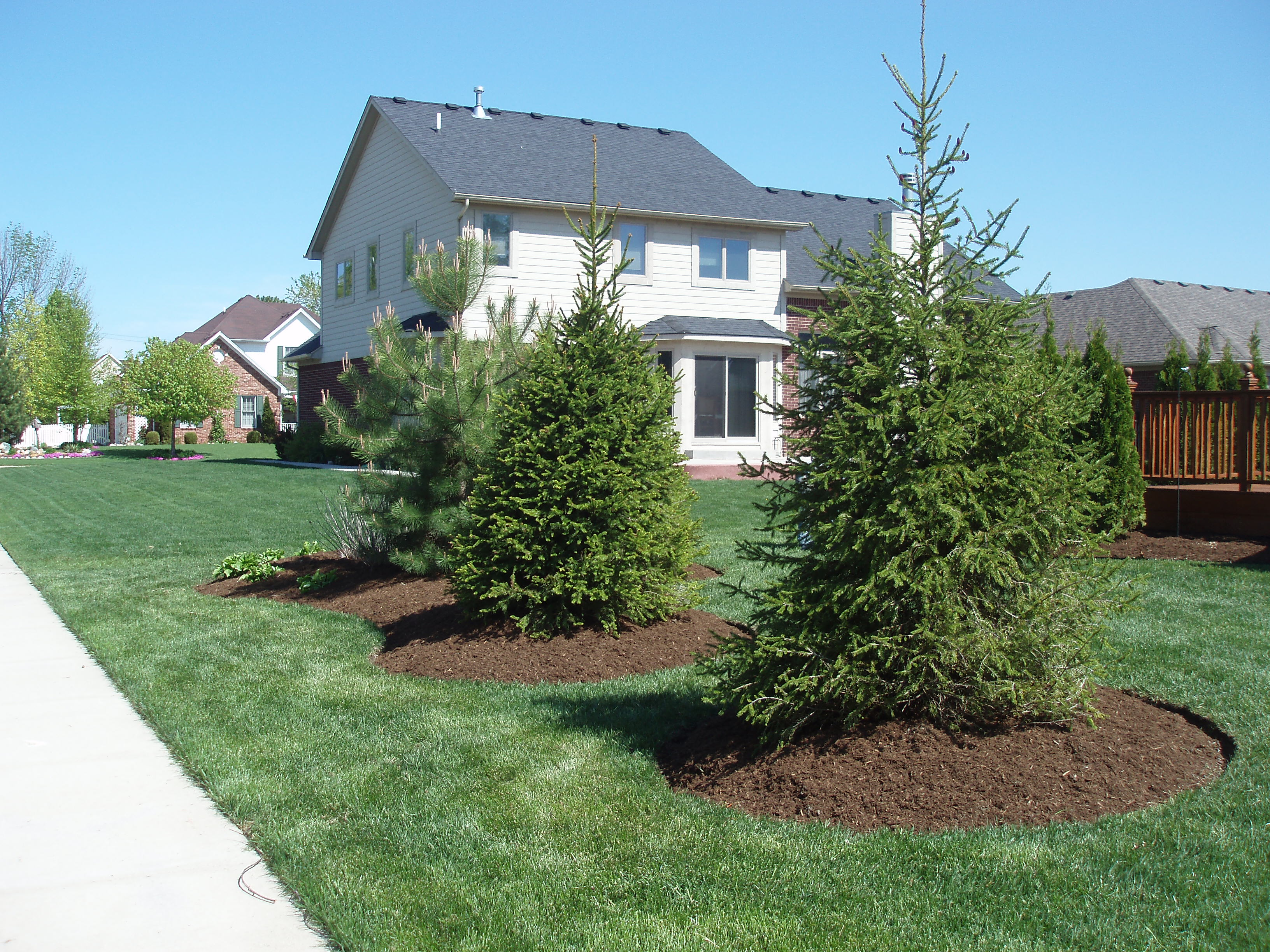 Beverly hills birmingham birmingham mi clawson mi for Tree landscaping ideas