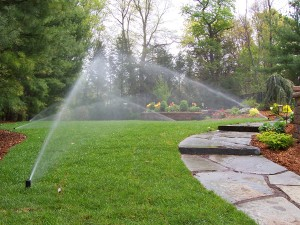 Sprinkler System Blowout and Winterization for Troy MI