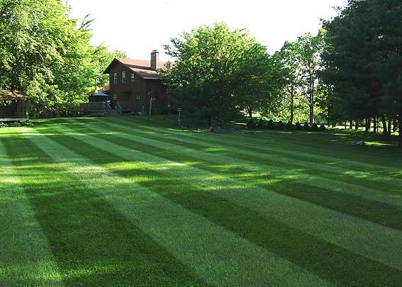 Lawn Mowing Total Care Inc Full